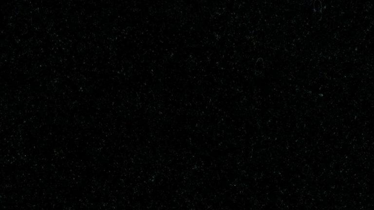 Індійський граніт Absolute Black